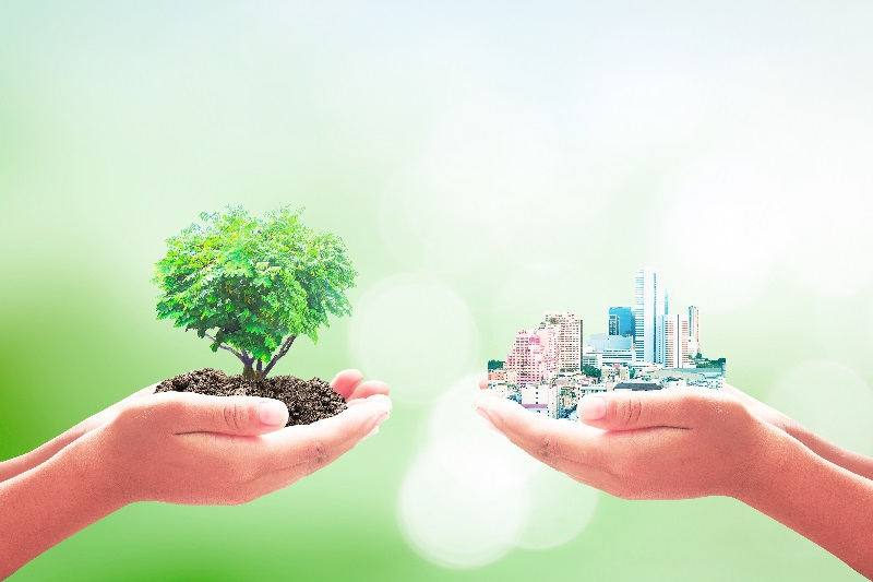 Sustainability is the Future of the Chemical Industry - Executive Summary Report